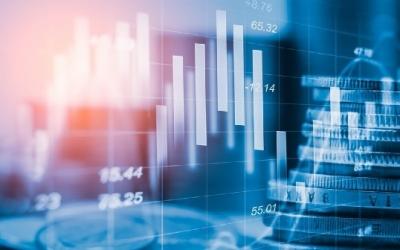 Трейдинг для новичков валютного рынка Форекс