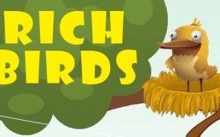 Стоит ли нести деньги на Rich Birds