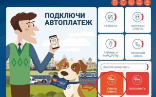 Как проверить баланс карты Стрелка в режиме онлайн, в терминалах самообслуживания, по телефону